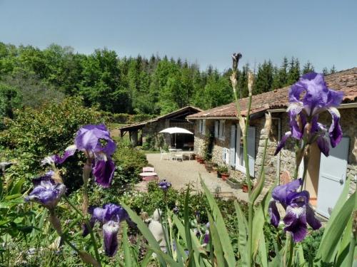 Photo of Maison Grillou