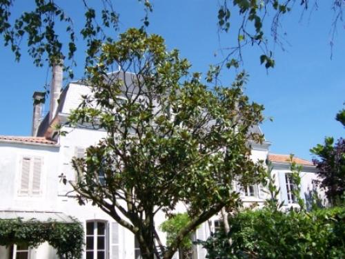 Photo of Chez Gaston